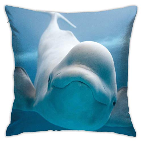 wteqofy Cute Beluga Whale,Pillow Case Cushion Cover Meticulous Sewing Skin-Friendly Valentine's Day Kids Kid's Bedroom Outdoor for Home Sofa Bedding 18inch*18inch