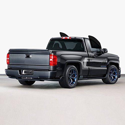 Tint Kits (Computer Cut) for All Two Door Trucks (C. Front Windows)