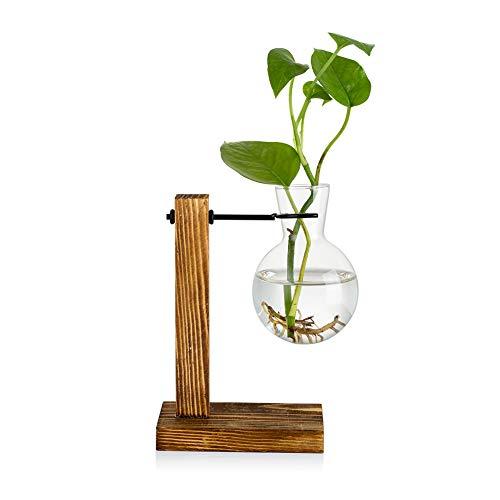 Vermehrungsstation Mit Holzregal 1 Birne Vintage Avocado Vase Glas Reagenzglas Vasen Für Blumen Eichel Pflanze Für Home Table Desk Indoor Decor