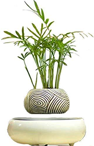 SEESU.U - Bonsái de Aire con suspensión magnética, Apto para Plantas pequeñas en macetas de Interior Creativas de cumpleaños (sin Plantas), B