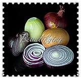 Generic Fresh 200 Unids Semillas de Cebolla China Gigante Ve