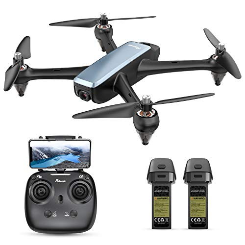 Potensic D60, GPS Drone with Camera for adults, 1080P HD FPV 110