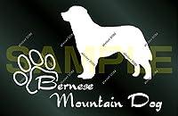 アトリエDOM 少し大きめ 犬のステッカー バーニーズマウンテンドッグ [白](受注生産)