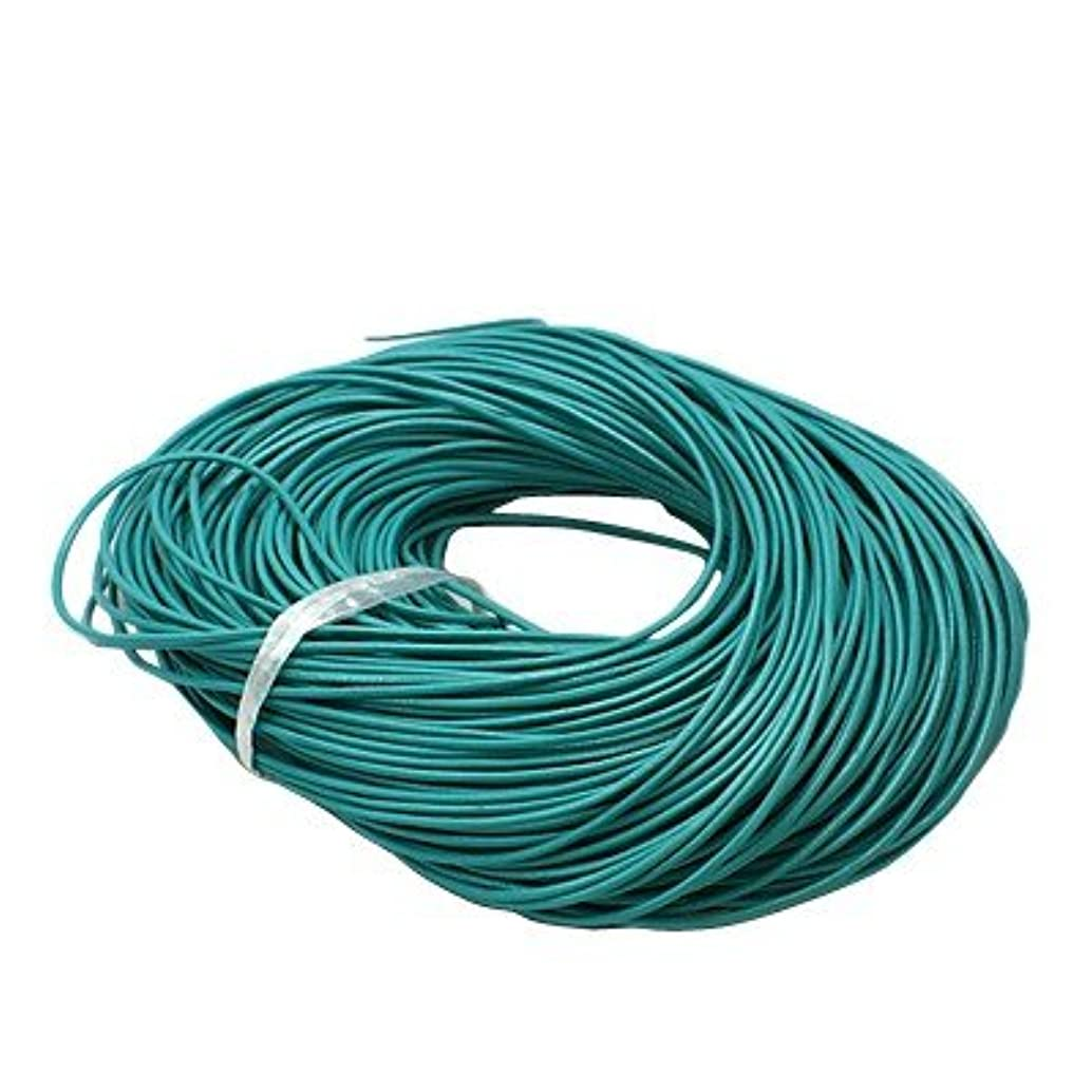 BeadsTreasure 15 Ft of Turquoise Genuine Leather Cord Round 2 mm Diameter.