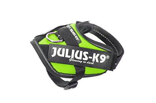 Julius-K9 16IDC-KW-B1 IDC Powerharness, Dog Harness, Size Baby 1, Kiwi