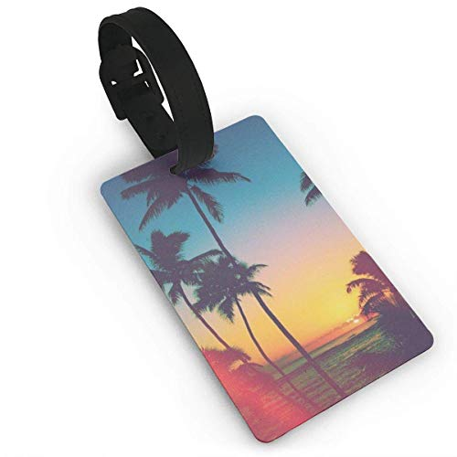 Etichette per bagagli Tropicool Travel Luggage Suitcase Labels ID Tags Business Card Holder
