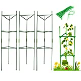 Zwish 48Inch 3Pack Garden Plant Support Stakes With 15 Cable Ties For Climbing Plants Vegetables Flowers Fruits Vine Tomato Cucumbers Plant Supports