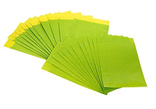 100 Stück kleine Papiertüte hellgrün grün apfelgrün 9,5 x 14 cm + 2 cm Lasche Verpackung Papierbeutel Kraftpapier-Tüte Geschenktüte Umschlag limone-quitte Kinder-Tüte