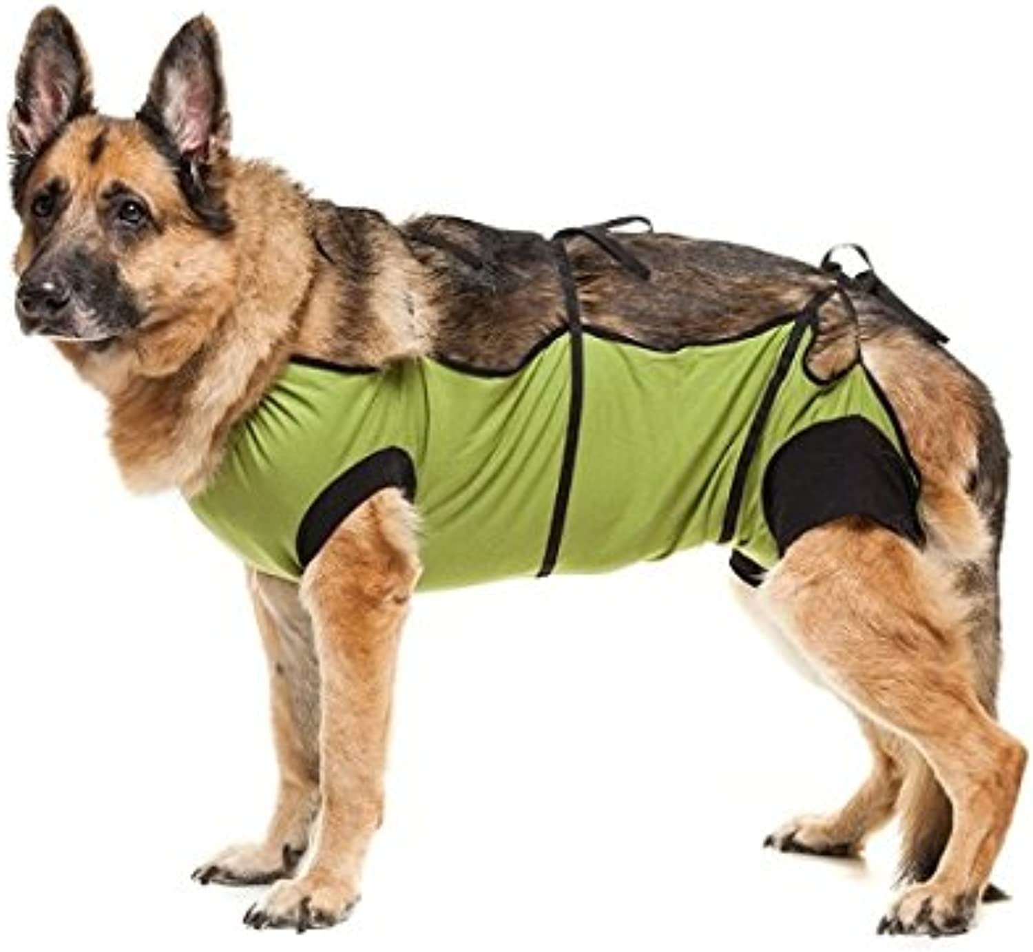 ECollar Alternative for Cats and Dogs  After Surgey Wear. Recommended By Vets (XLarge, Green)