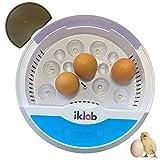 IKLOB - Incubadora de huevos gallina aves pollos, pato, ideal incubadora huevos de codorniz 9/12 huevos (modelo con depósito , NO esponja-mayor eclosión), con control de temperatura