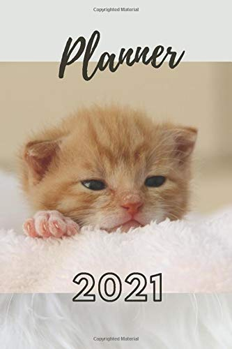Planner 2021: Weekly, daily planner 2021. Simple planner 2021 with  ginger kitten, cat, sweet kitty, sweet cat. Christmas gift for cats lovers, ... 2021 wit cat, kitten. January-December 2021.