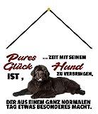 Blechschild Con cordón de 30 x 20 cm. Decoración con texto en alemán: 'Pures Glück ist, Zeit mit Ihr Hund'.