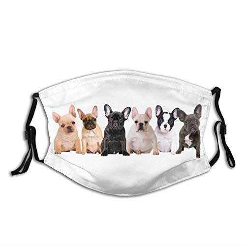 French Bulldog Face Mask Washable Reusable Face Cover Scarf with 2 Pcs Filters for Men Women Adults
