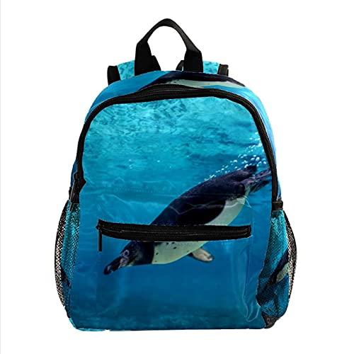 ColorMu Mini mochila para computadora portátil, bolsa para computadora portátil para mujeres Humboldt pingüino buceo bajo el agua para el trabajo, escuela, al aire libre