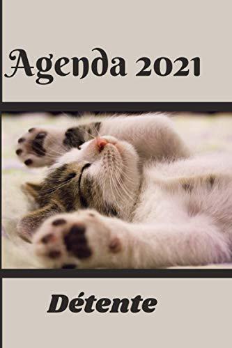 41LwSOezKqL - Calendrier 2021 des Chats Adeptes de Yoga pour se Relaxer