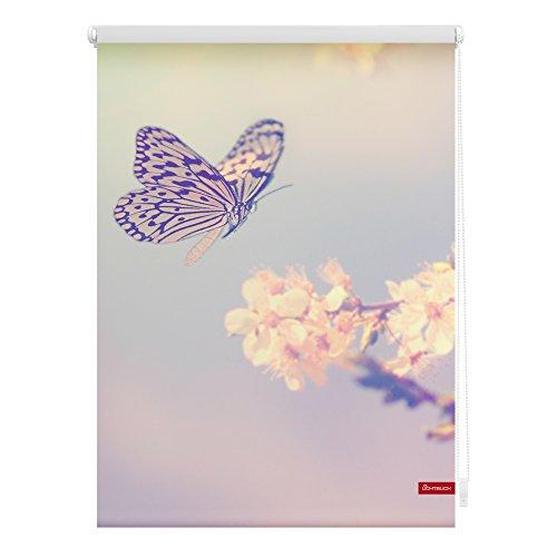 Lichtblick Rollo Klemmfix, 100 x 150 cm mit Motiv Schmetterling - Rosa Montage ohne Bohren, moderner Sicht-und Sonnenschutz, Motivrollo, lichtdurchlässig & Blickdicht