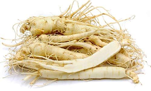 Fresh American Ginseng Roots (8 oz)