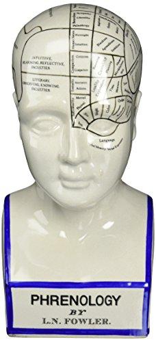Design Toscano SP020 Porcelain Phrenology Head Fortune Telling Statue, 12 Inch, Porcelain, White