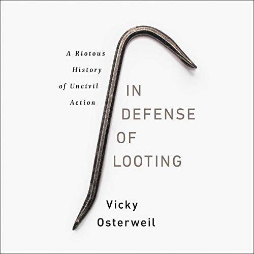 In Defense of Looting  By  cover art