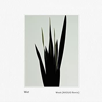 Weak (AKOUO Remix)