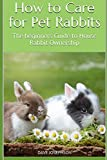 How to Care for Pet Rabbits: The beginners Guide to House Rabbit Ownership