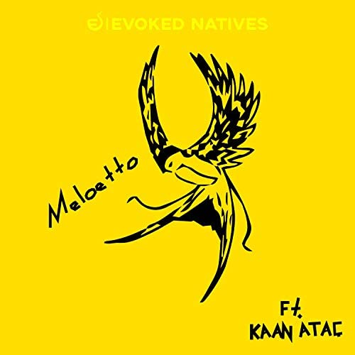 Meloetto & EVOKED NATIVES feat. Kaan Ataç