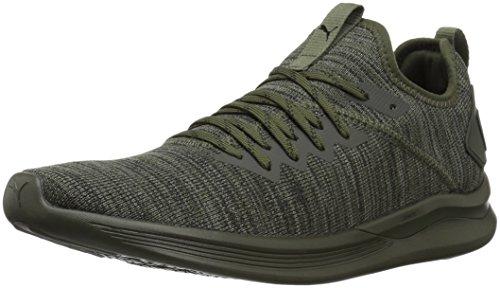 PUMA Men's Ignite Flash Evoknit Sneaker, Forest Night-Castor Gray Black, 10 M US