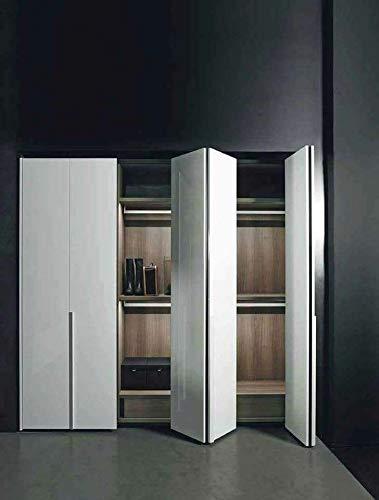 indaux Kit de herrajes deslizantes para puertas de muebles, armarios, armario plegable con nueva opción Soft 25 kg (clic, 2 puertas)
