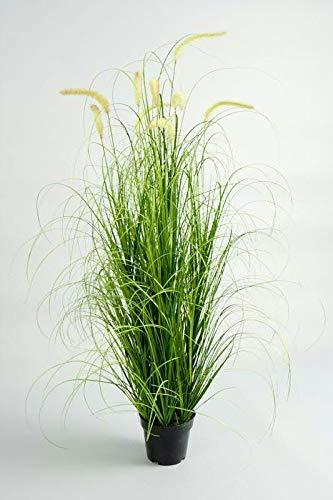 Klocke Kunstpflanzen Hochwertiges & Künstliches Gras/Dekogras mit Schilf - Wunderschön & Naturgetreu - Grasarrangement/Gras Arrangement/Grasbüschel/Grasbündel (Groß: 145cm)