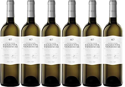 Vino Blanco Cuarenta Vendimias Verdejo D.O Rueda 6 Botellas de 750 ml (Total 4.5 L)