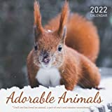"""Adorable Animals 2022 Calendar: From January 2022 to December 2022 - Square Mini Calendar 7x7"""" - Small Gorgeous Non-Glossy Paper"""