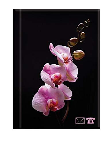 """Herlitz Mini Adressbuch mit A-Z Register / Größe: 8 x 11cm / """"Orchidee"""""""