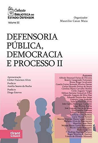 Defensoria Pública, Democracia e Processo II