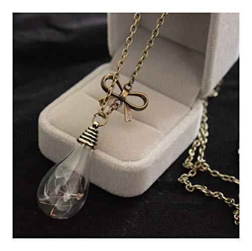 Accesorios Hombres Mujeres Simple Vidrio Claro Colgante, Collar en Forma de corazón Botella de Cristal de la semilla del Diente de Deseos Drift Botella de Plata Cadena del Collar Regalo