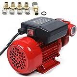 Pompa di aspirazione dell'olio, 220 V, 370 Watt, trasferimento diesel, pompa carburante per auto, moto, veicoli 40 l/min (370 W)
