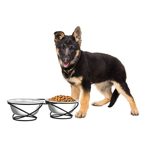 """PETMAKER Stainless Steel Raised Food & Water Bowls with Decorative 3.5"""" Tall Stand for Dogs & Cats-2 Bowls, 40oz Each-Elevated Feeding Station"""