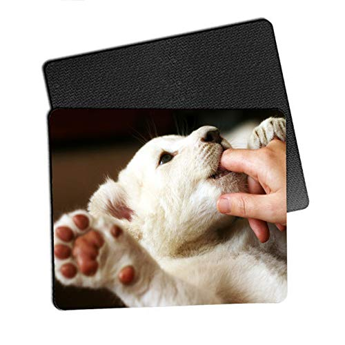 10pcs Sublimation Mouse Pad Blank Mouse Pad Sublimation Blanks Mousepad for Sublimation Transfer Heat Press Printing Crafts Non Slip Bottom 24x20x0.3CM
