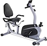 Magnetic Recumbent Exercise Bike Indoor Stationary Bike with Adjustable Cushion Seat and Resistance,Pluse Monitor,Transport Wheels and Tablet Holder for Home Use