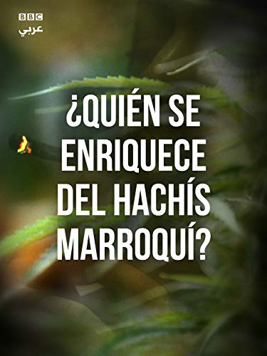 ¿Quién Se Enriquece del Hachís Marroquí?