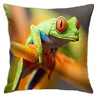 ポリエステルスローピローケースクッションカバーツリーソファのかわいい大きな目のカエル家の装飾(18x18インチ/ 45x45cm)