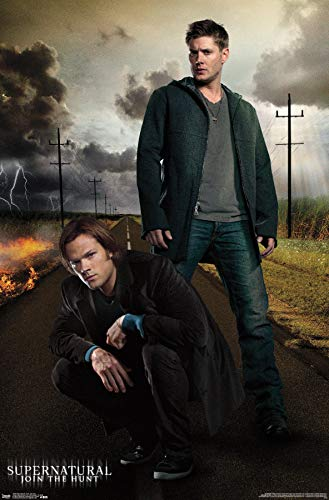 Sam and Dean Wall Poster