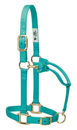 Weaver Leather Original Adjustable Nylon Horse Halter, Average Horse, Mint