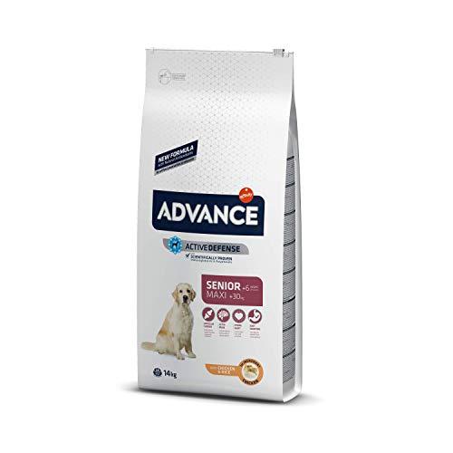 ADVANCE Senior Maxi - Pienso Para Perros Senior De Razas Grandes Con Pollo - 14 kg