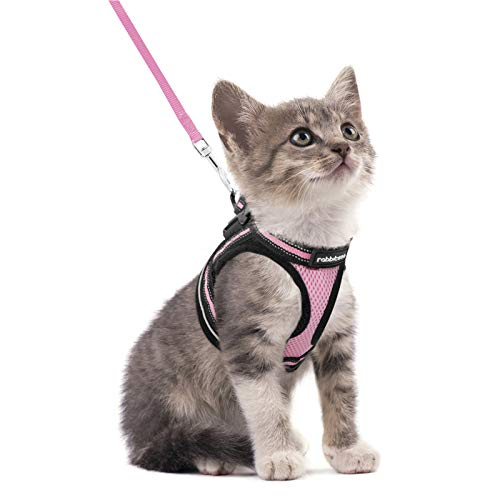 rabbitgoo Cat Harness and Leash Set for Walking Escape Proof, Adjustable Soft Kittens Vest with Reflective Strip for Cats, Step-in Comfortable Outdoor Vest, Pink, S (Chest:9.0'-12.0')