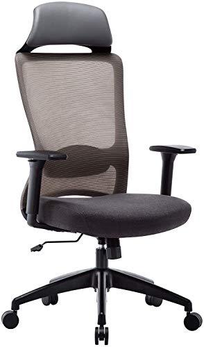 LQ Amoiu ergonomica Sedia da Ufficio, Sedia esecutivo Mesh, Computer Desk Sedia di operazione con poggiatesta e LumbarSupport, Passato la Certificazione BIFMA/SGS, braccioli Regolabili, Grigio