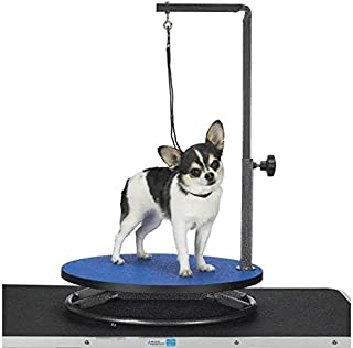 Master Equipment Pet Grooming Table for Pets