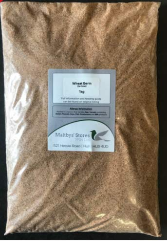 Maltbys' Stores 1904 Limited 1 X 1kg WHEAT GERM (DE FATTED) FISHING GROUND BAIT WHEATGERM
