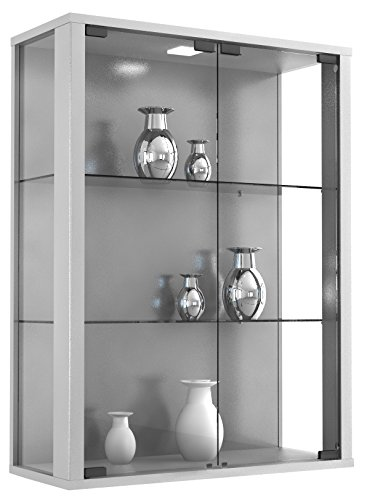 "VCM Wandvitrine Sammelvitrine Glasvitrine Wand Vitrine Regal Schrank Glas Hängevitrine 80 x 60 x 25 cm Silber \""Udina\"""