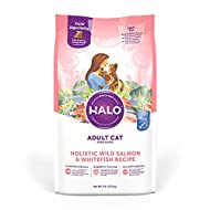 Halo Natural Dry Cat Food, Non-GMO, Premium Whole Meat,Supports Eye and Heart Health, Adult Recipe, Salmon and Whitefish