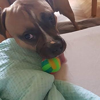 Bbl345dLlo Jouet amusant pour chien en forme de ballon de football avec lumière LED et son rebondissant - Couleur aléatoire